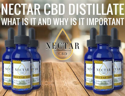 Nectar CBD Distillate: What Is It and [Why Is It Important]